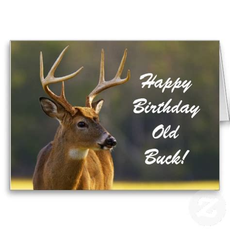 printable birthday card hunting hunting funny buck animal camo happy birthday 3 greeting