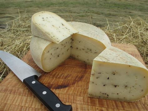 Plant Lovers good shepherd cheese artisan sheep cheese our cheese