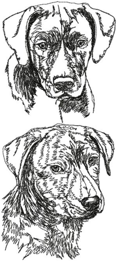 advanced embroidery designs mountain cur set