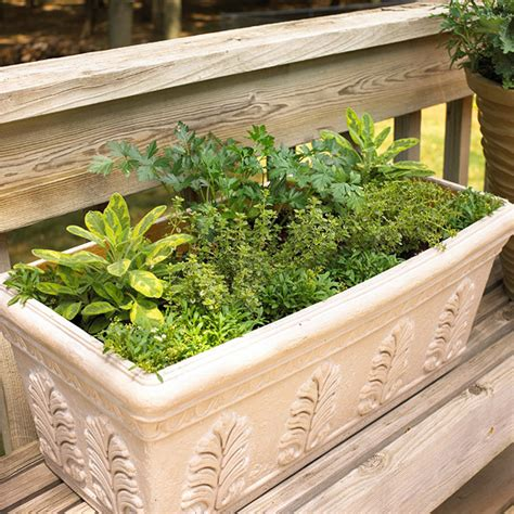 diy herb garden box picture of diy herbal window box