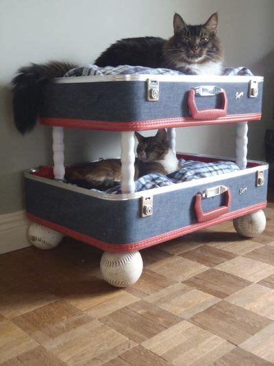 cat bunk beds for sale best 25 bunk beds ideas on beds