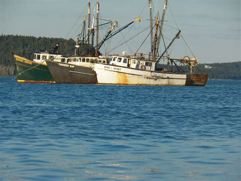 lobster fishing boat images lobster boats free stock photo public domain pictures