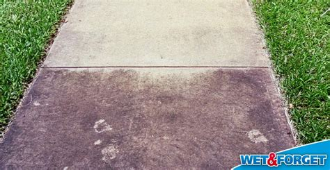 removing mold from concrete patio ask forget rev up your cleaning with