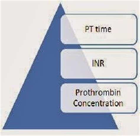 high prothrombin time and inr results explanation blood
