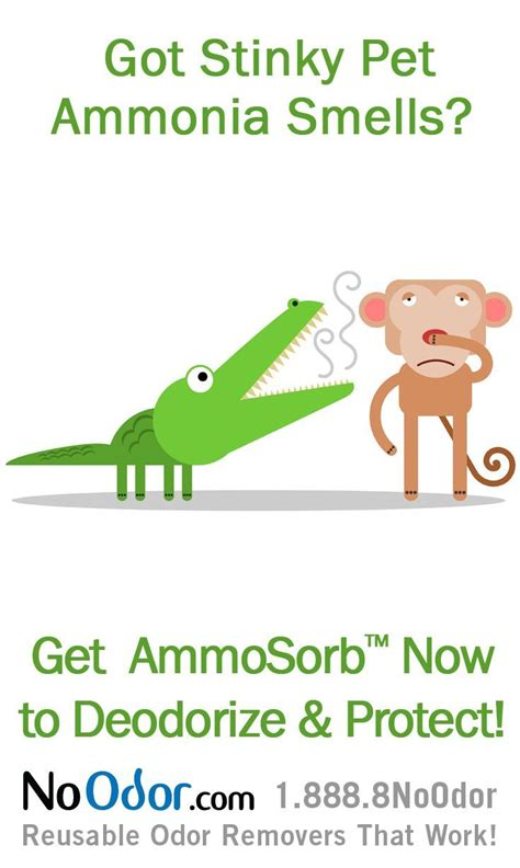 1000 images about ammonia smell solutions on pinterest the o jays freshwater aquarium and