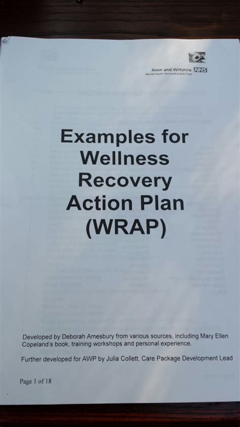 wellness and recovery plan template sle wrap wellness recovery plan after bpd