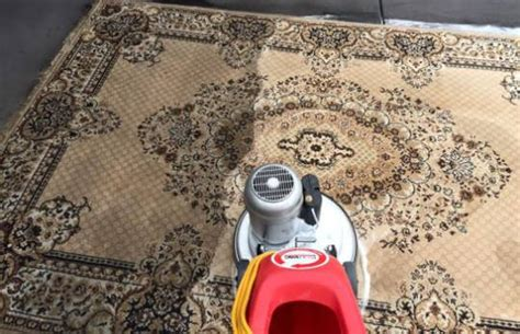 rug cleaning adelaide adelaide carpet cleaning complete carpet cleaning adelaide