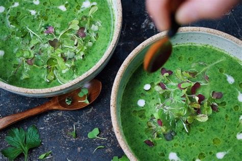 Detox Paleo Soup by Paleo Detox Green Soup Whole30 Keto Aip Iheartumami
