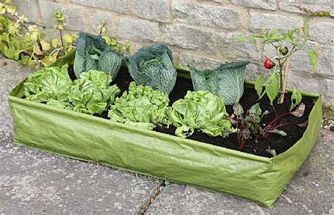 Vegetable Planterbag Large patio raised bed growing bags for vegetables patio raised beds