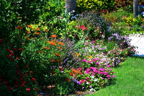 How To Design A Perennial Garden Simple Flower Garden Perennial Garden Layout