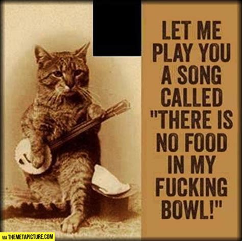 cat song let me sing you my song