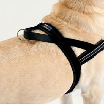 comfort flex dog harness comfort flex sport harness