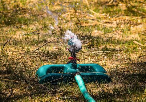 Best Garden Sprinkler best garden sprinklers for lawn forgardening