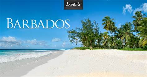 Barbados Search Sandals Barbados All Inclusive Search Results Dunia Photo