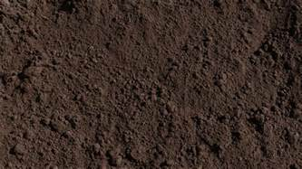 amended top soil rocky mountain compost