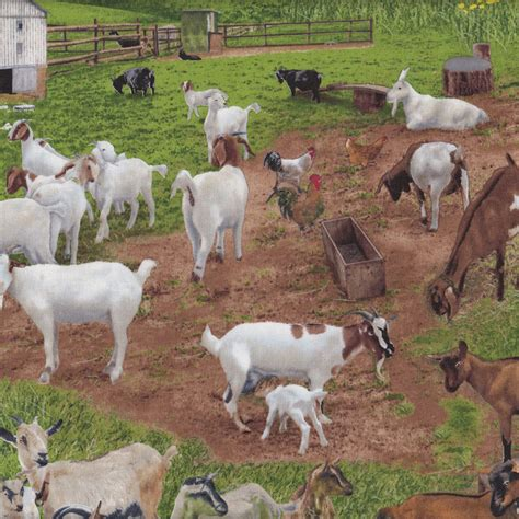 theme names for goats farm animals assorted find a fabric
