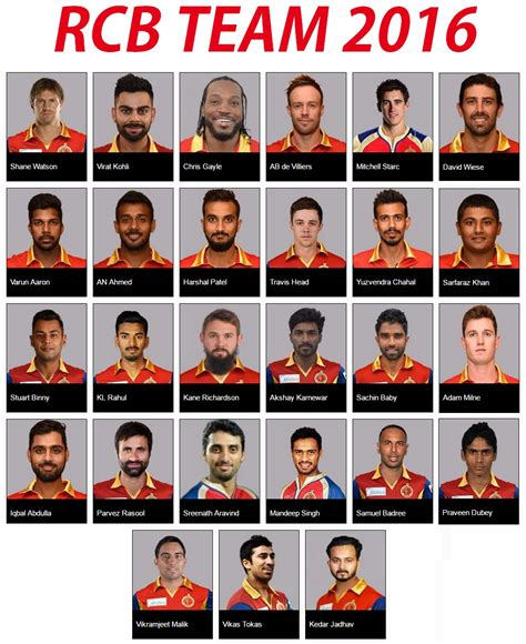 ipl all team player list royal challengers bangalore team squad for ipl 2016