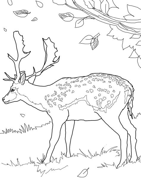 free coloring pages of deer symbol