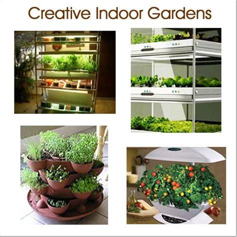 indoor vegetable garden low light indoor vegetable gardening