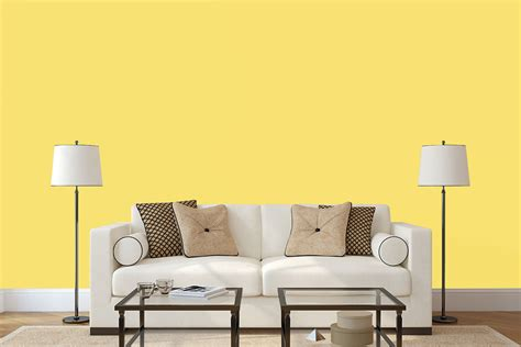 living room feature wall colours fascinating 20 living room feature wall colours design inspiration of 25 best dulux feature