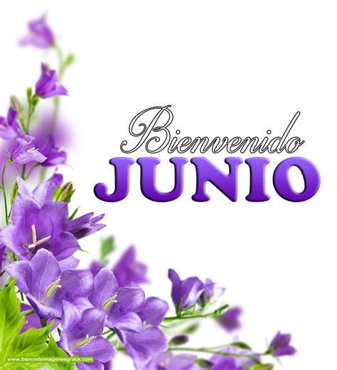 imagenes positivas mes de junio mes de junio pictures to pin on pinterest pinsdaddy