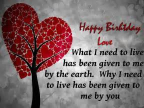 I Love You Birthday Quotes by Happy Valentine 39 S Day Quotes