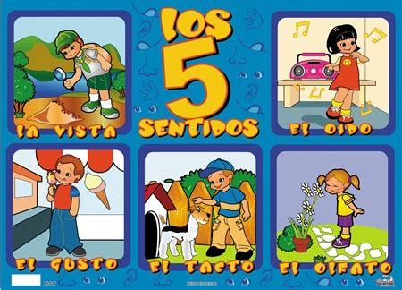 libro los 5 sentidos de recursos tic infantil sentidos