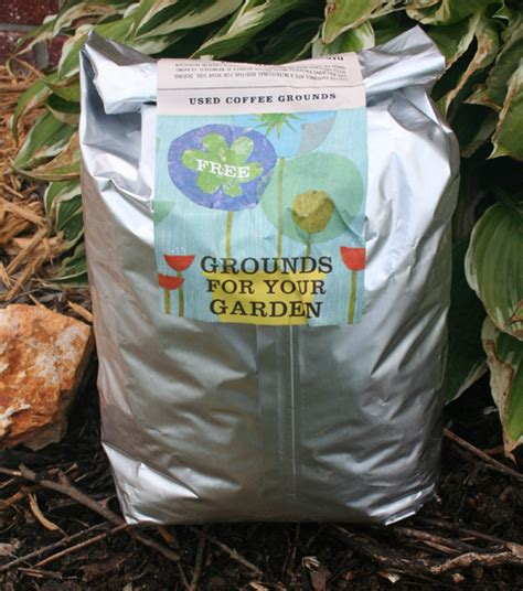 Are Coffee Grounds For Your Garden by Starbucks Grounds For Your Garden