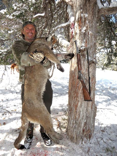 mountain lion whitaker brothers hunting company