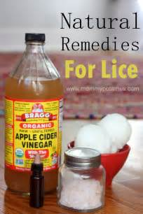 how to treat lice at home remedies for lice