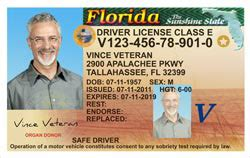 florida drivers license template flagler county tax collector gt home