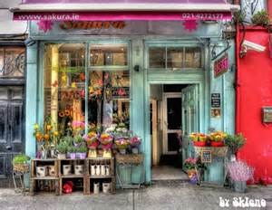 flower shop flowers store fronts and pixel on
