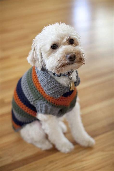 free crochet pattern for dog coats 25 best ideas about crochet dog sweater on pinterest