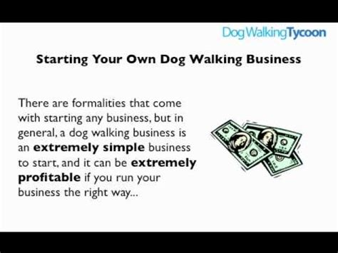 how to start a puppy how to start a walking business