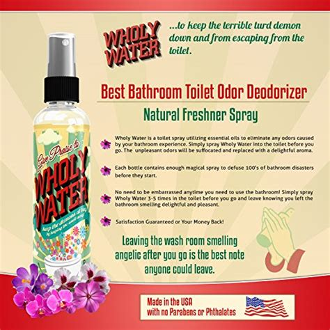 best bathroom spray deodorizer best bathroom spray deodorizer 28 images best bathroom