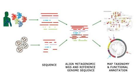 nih human microbiome project microbial reference genomes
