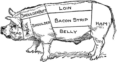 how to butcher a pig diagram pig diagram clipart etc