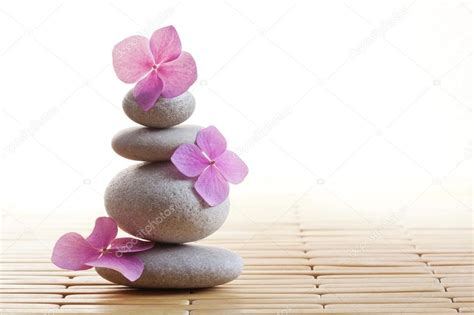 imagenes de piedras zen fiori e pietre zen foto stock 169 komarmaria 33532961
