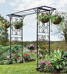 Garden Arch Geelong 1000 Ideas About Iron Pergola On Pergola