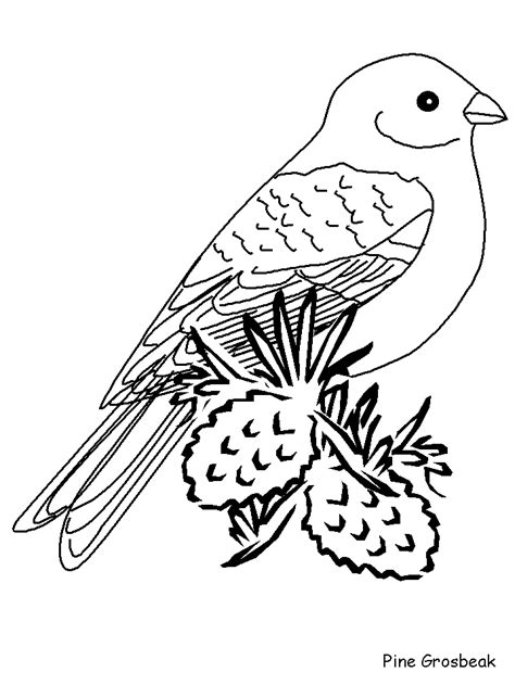 free coloring pages of winter birds