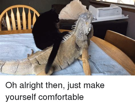 make yourself comfortable 25 best memes about oh alright oh alright memes