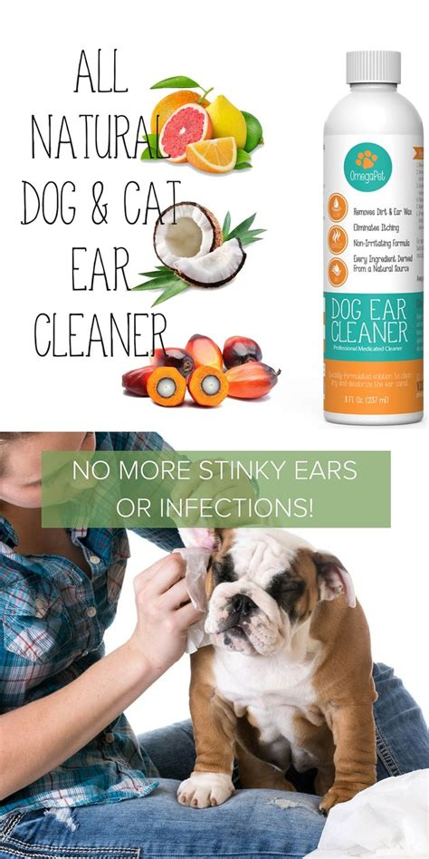 ear cleaner for dogs 1000 ideas about ear cleaner on