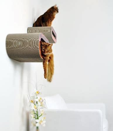 wandmeubel kat persbericht persbureau eko pets nl voor dieren natuurlijk