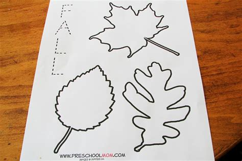 printable preschool fall activities mommy s little helper leaf preschool theme