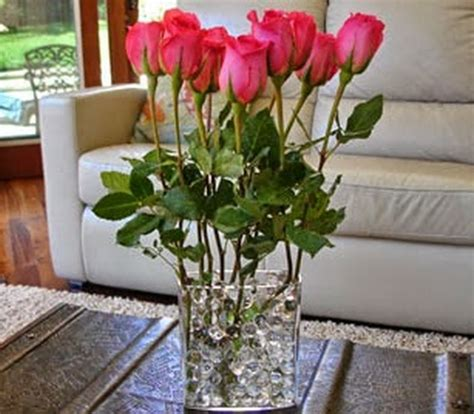 Tempat Jual Tanaman Hidrogel gambar mempertahankan kesegaran bunga potong bibitbunga