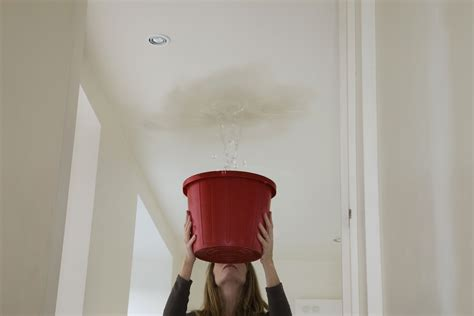 troubleshoot  fix ceiling leaks