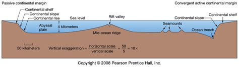 How Was The Continental Shelf Formed by Flashcards Ocn100 Review Density Stratification