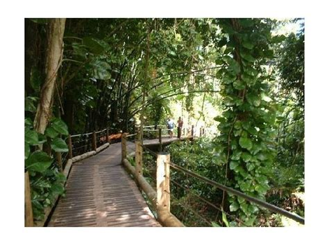 hawaii kona botanical garden outdoor loves pinterest