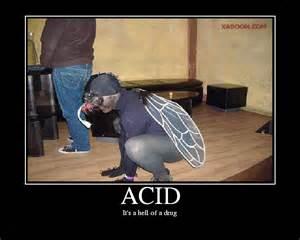 tripping on acid www imgkid the image kid has it