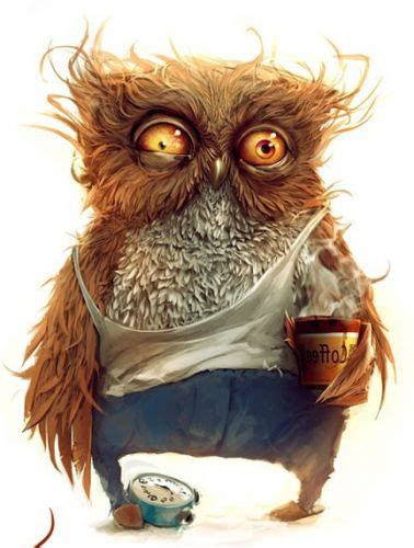 owl coffee new year an image on imgfave